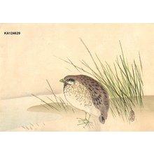 Araki, Kampo: Quail by river - Asian Collection Internet Auction