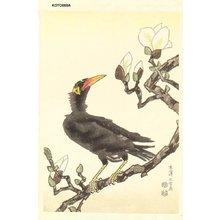 Kotozuka Eiichi: Myna and Magnolia - Asian Collection Internet Auction