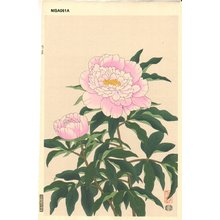 Ito, Nisaburo: Pink Peony - Asian Collection Internet Auction