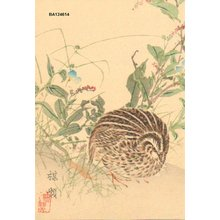 幸野楳嶺: Quail and autumnal flowers - Asian Collection Internet Auction