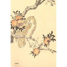 今尾景年: Parrot and pomegranates - Asian Collection Internet Auction