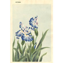 Kotozuka Eiichi: Blue Iris - Asian Collection Internet Auction