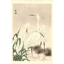Kotozuka Eiichi: Snowy egrets - Asian Collection Internet Auction