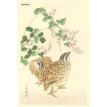 Kotozuka Eiichi: Quails an Bush Clover - Asian Collection Internet Auction