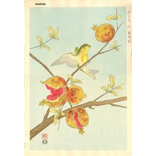 Ashikaga, Shizuo: Siskin and Pomegranet - Asian Collection Internet Auction