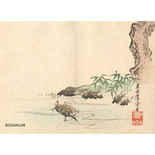 Sogaku Dojin Genpo: Turtle - Asian Collection Internet Auction