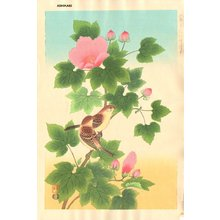 Ashikaga, Shizuo: Sparrow and Cotton Rose - Asian Collection Internet Auction