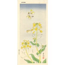 Jo: Butterflies and yellow flowers - Asian Collection Internet Auction