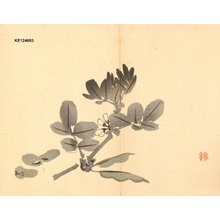 Imao Keinen: Broad bean flowers - Asian Collection Internet Auction
