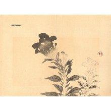 Imao Keinen: Cockscombs - Asian Collection Internet Auction