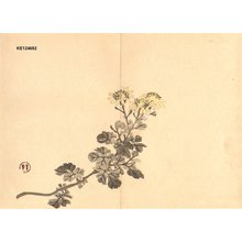 Imao Keinen: Chrysanthemums - Asian Collection Internet Auction