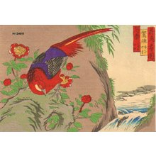 Utagawa Hiroshige III: Pheasant and Chinese peonies - Asian Collection Internet Auction