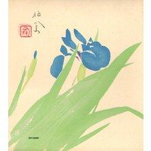 Takeuchi, Seiho: Iris - Asian Collection Internet Auction