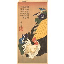 Utagawa Hiroshige: Cock, morning glories, and umbrella - Asian Collection Internet Auction