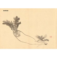 Kono Bairei: DAIKON (radish) - Asian Collection Internet Auction