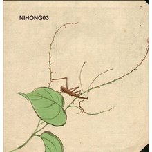 Attributed to Zeshin 91807-91): Mantis - Asian Collection Internet Auction