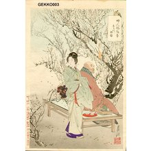 Gekko: BIJIN (beauty) - Asian Collection Internet Auction
