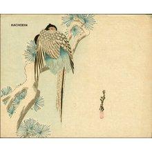 代長谷川貞信〈3〉: Pheasant in snow - Asian Collection Internet Auction