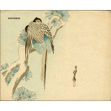 Hasegawa Sadanobu III: Pheasant in snow - Asian Collection Internet Auction
