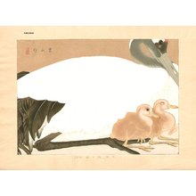 Tsuchiya, Rakuzan: Japanese crane and two chicks - Asian Collection Internet Auction