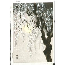 Kotozuka Eiichi: Drooping Cherry Blossoms - Asian Collection Internet Auction