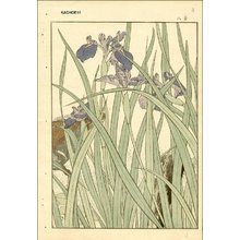 Imao Keinen: Keinen's Book of Birds and Flowers - Asian Collection Internet Auction