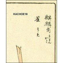 Kono Bairei: KIRINGAKU (giraffe horn) and sparrow - Asian Collection Internet Auction