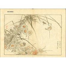 Kono Bairei: YAMAJI GIKU (mountain path) and spider - Asian Collection Internet Auction