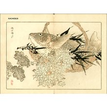 Kono Bairei: TAKI (waterfall) - Asian Collection Internet Auction