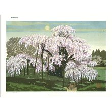 Ido, Masao: Moon and Cherry Blossoms - Asian Collection Internet Auction