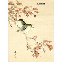 Kikuchi, Hobun: Japanese white eyes - Asian Collection Internet Auction