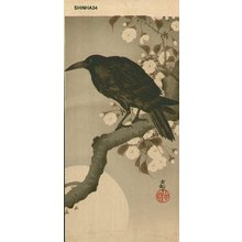 Shoson Ohara: Crow on a Cherry Branch and the Moon - Asian Collection Internet Auction