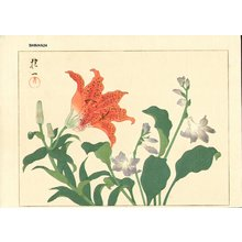 Sakai Hoitsu: Tiger lily and purple hosta - Asian Collection Internet Auction