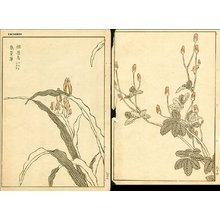 幸野楳嶺: Florals - Asian Collection Internet Auction