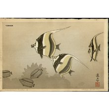 Yoshida Toshi: Hawaiian Fish B - Asian Collection Internet Auction