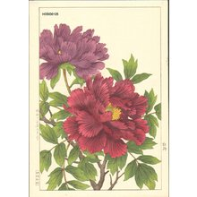 Nishimura, Hodo: Peony - Asian Collection Internet Auction
