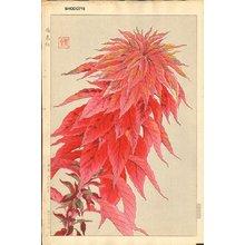Kawarazaki, Shodo: Red Amaranth - Asian Collection Internet Auction