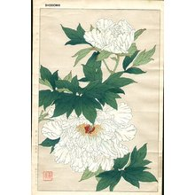 Kawarazaki, Shodo: White Peonies - Asian Collection Internet Auction