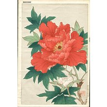 Kawarazaki, Shodo: Red Peonies - Asian Collection Internet Auction