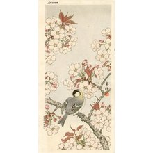 Jo: Sparrow and Cherry - Asian Collection Internet Auction