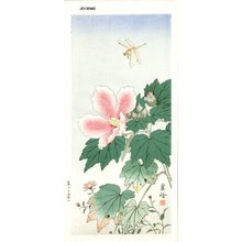 Jo: Dragonfly and Hibiscus - Asian Collection Internet Auction