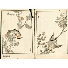 Kono Bairei: Three birds - Asian Collection Internet Auction