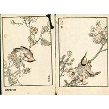 Kono Bairei: Three birds - Asian Collection Internet Auction