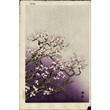 Kotozuka Eiichi: Cherry Blossoms - Asian Collection Internet Auction
