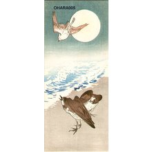 Shoson Ohara: Plovers on seashore - Asian Collection Internet Auction
