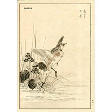 Kono Bairei: Waterbird - Asian Collection Internet Auction