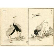 Kono Bairei: Cranes, diptych - Asian Collection Internet Auction