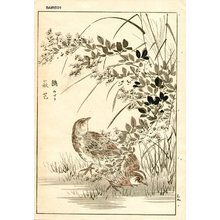 幸野楳嶺: Sparrows - Asian Collection Internet Auction