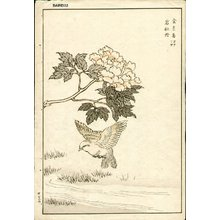 Kono Bairei: Bird and crysanthemum - Asian Collection Internet Auction