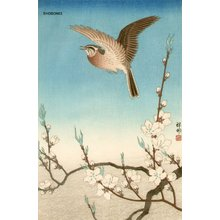 Shoson Ohara: Skylark and flowering peach - Asian Collection Internet Auction